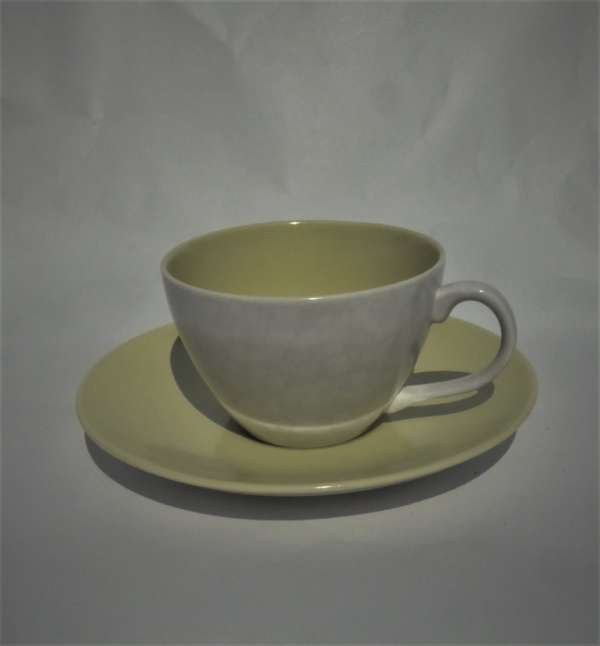 1950s Poole Twintone Lime/Seagull Cup and Saucer